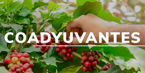 coadyuvantes-Importador-y-distribuidor-de-productos-agricolas-yaser