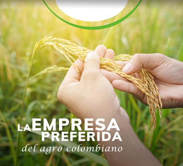 nosotros-Importador-y-distribuidor-de-productos-agricolas-yaser