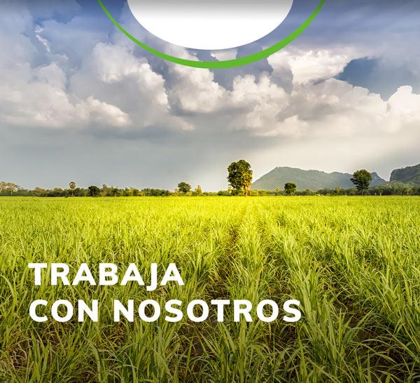 trabaja-Importador-y-distribuidor-de-productos-agricolas-yaser